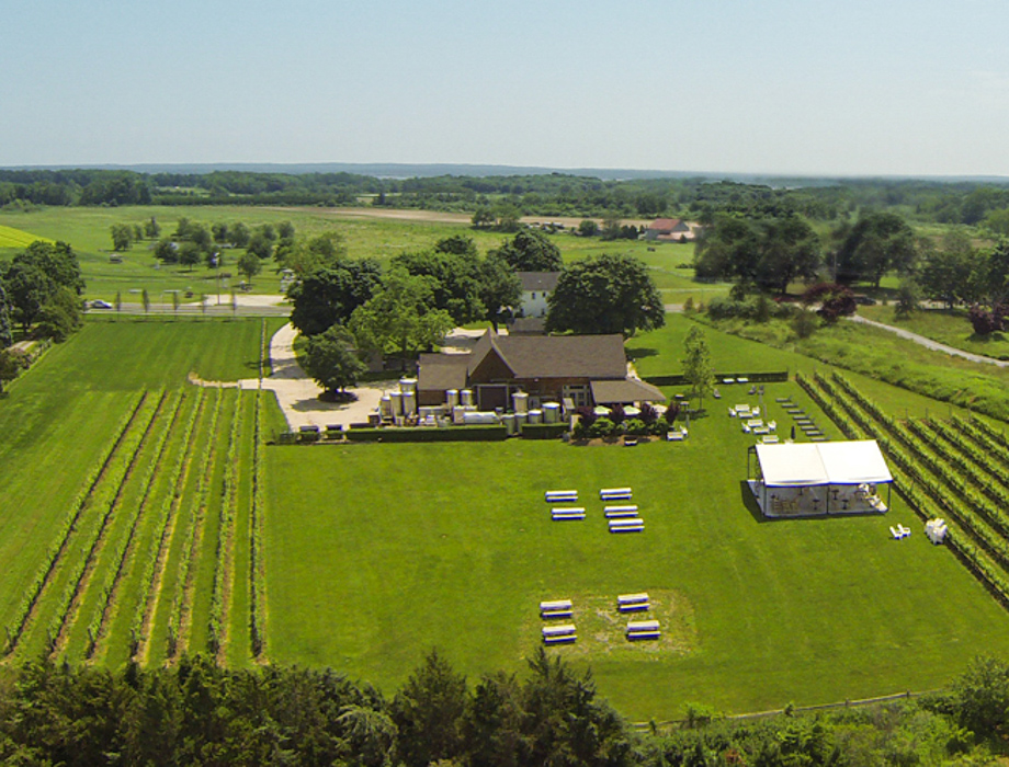 Aerial of vineyard